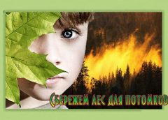 сбережем лес
