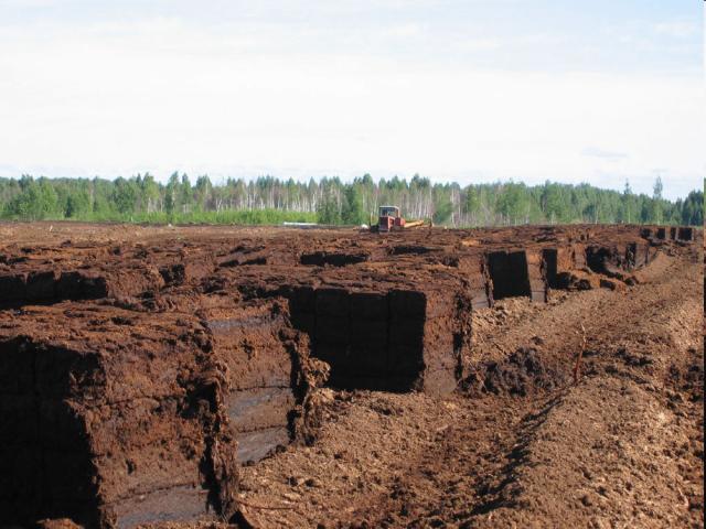 Локализация торфяного пожара производится окапыванием горящего участка