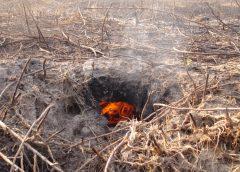 Горение торфа во время лесного пожара