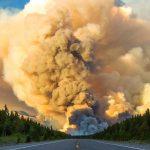 Крупные лесные пожары