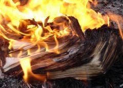 Горят листы книги